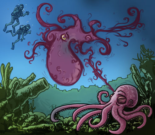 octopus and divers